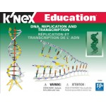 K'NEX DNA, Replication & Transcription - KNX78780
