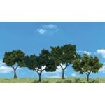 Scene A Rama - Deciduous Trees - 4150