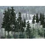 Woodland Scenics - Conifer Trees - WOO1581